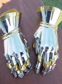 Stainless Finger Gauntlets
